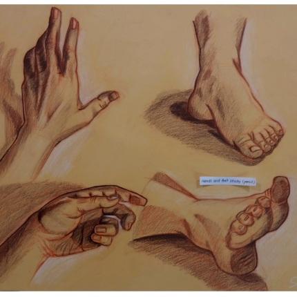 Hands & Feet study